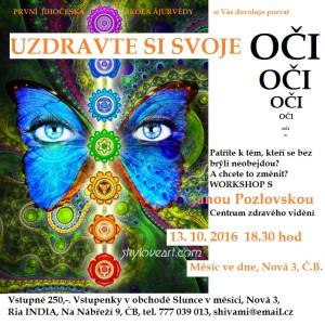 Uzdravte si svoje oči Workshop pro zdravý zrak 13.10.2016 18.30 Galerie Měsíc ve dne, Nová 3, ČB